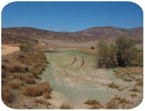 Environmental Land