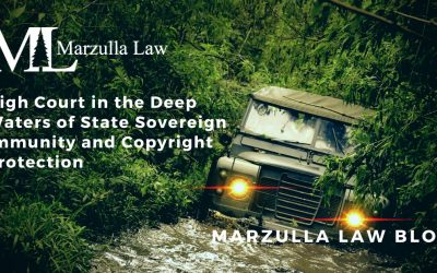 High Court in the Deep Waters of State Sovereign Immunity and Copyright Protection
