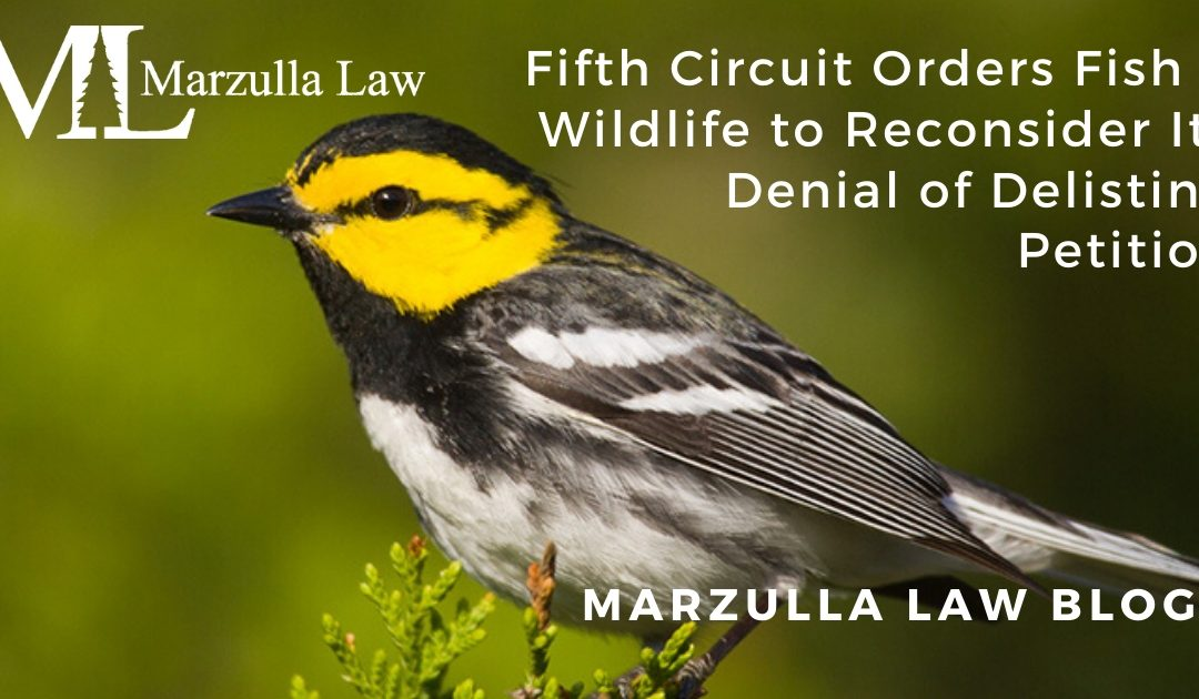 Fifth Circuit Orders Fish & Wildlife to Reconsider Its Denial of Delisting Petition