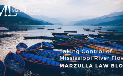 Taking Control of Mississippi River Flows