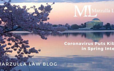 Coronavirus Puts Kibosh in Spring Interns