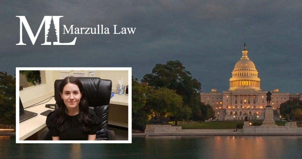 marzulla law intern marie brazeau