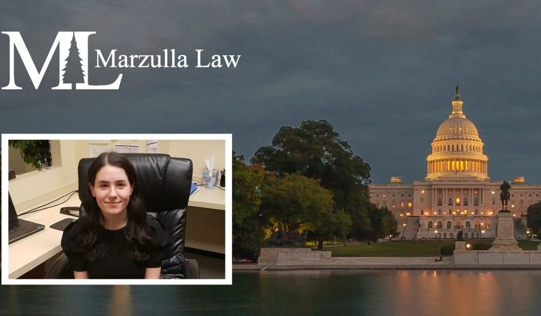 Marzulla Law Intern Spotlight: Marie Brazeau