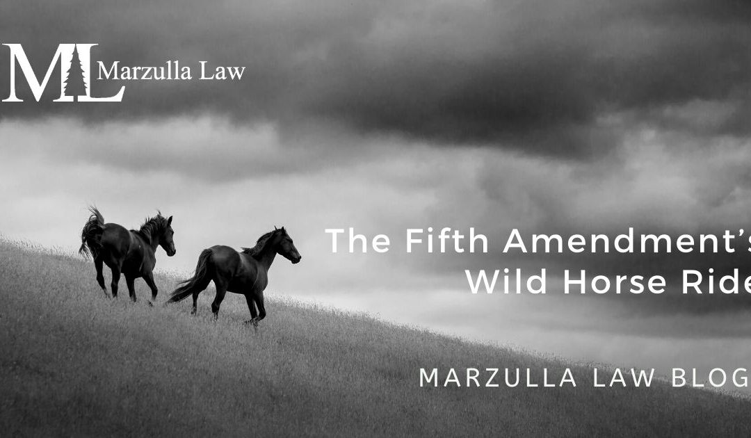 black-and-white-photo-wild-horses-on-grassy-hill article about federal takings suit