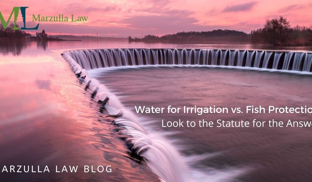 Water for Irrigation vs. Fish Protection? Look to the Statute for the Answer